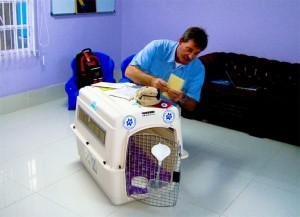 Delmon_Pets_Relocators_Bahrain_Horz (15)