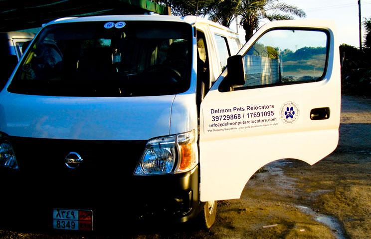 Delmon_Pets_Relocators_Bahrain_Horzn (3)
