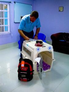Delmon_Pets_Relocators_Bahrain_Ver